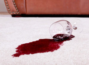 Carpet Stain Protection Service