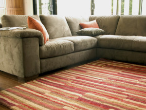 are rug cleaning wayne county MI